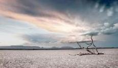 Desolation During Millennium