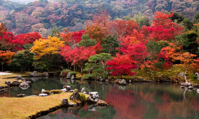 Sogenchi Garden at Tenryu-ji Temple, Arashiyama, Kyoto, Japan, November