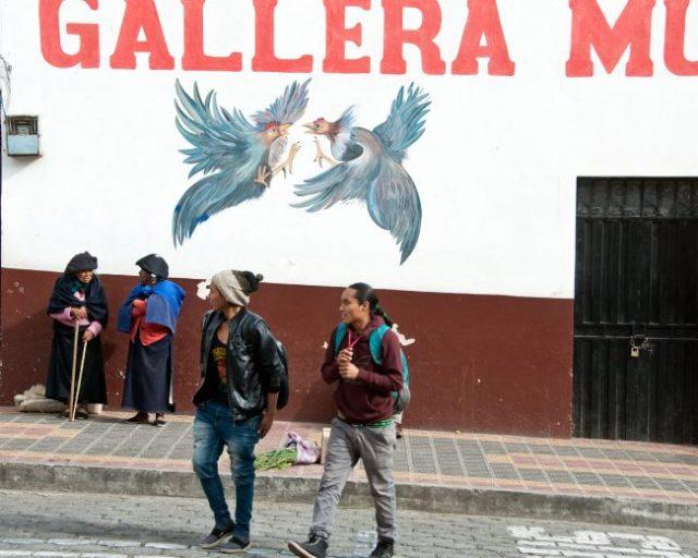 Market, Otavalo