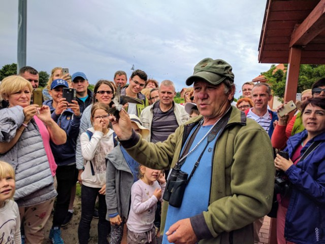 Tour of Ventės Ragas, the biggest bird catching and ringing base in Europe. Demonstration of releasing a banded bird.