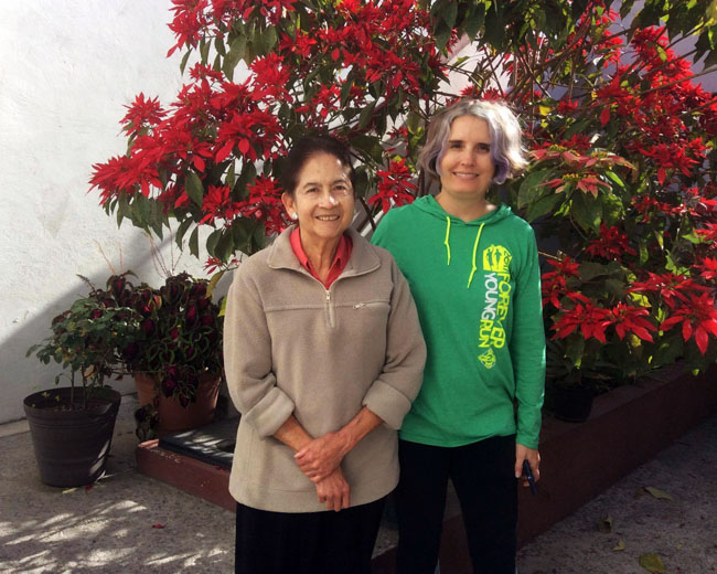 Homestay - Spanish language school in Mexico