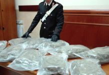 carabinieri marijuana giuseppe vuolo