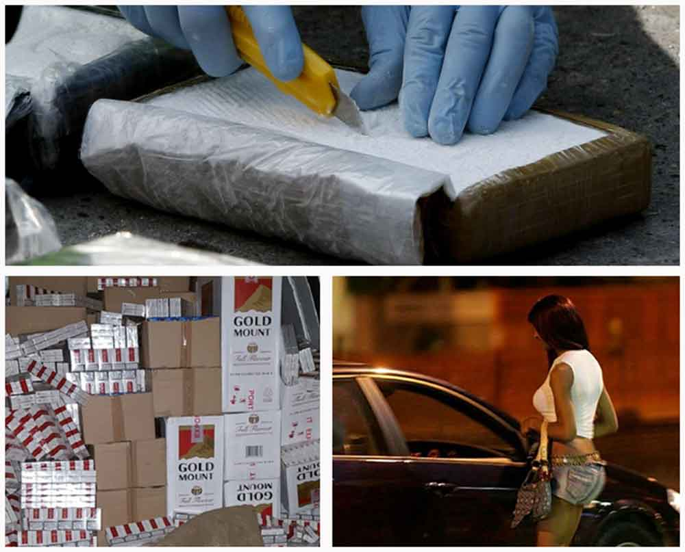 Droga, prostitute e sigarette: a Parma 170 segnalazioni