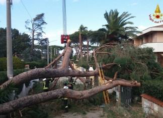 Maltempo in Calabria, raffiche di vento oltre i 100 km orari: danni
