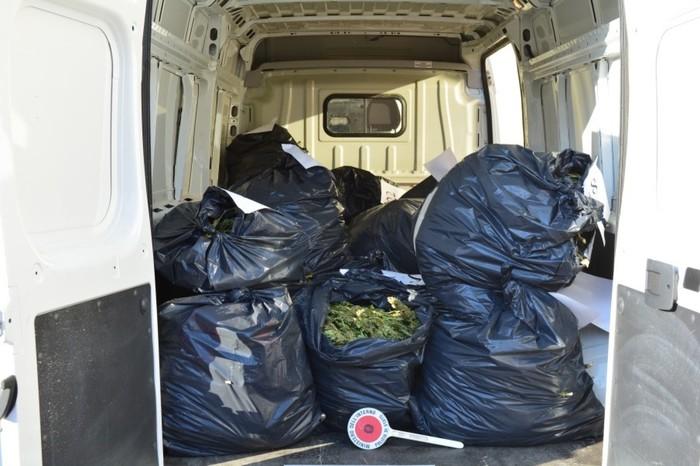 Polizia sequestra a Crotone oltre cento kg di marijuana, 4 arresti
