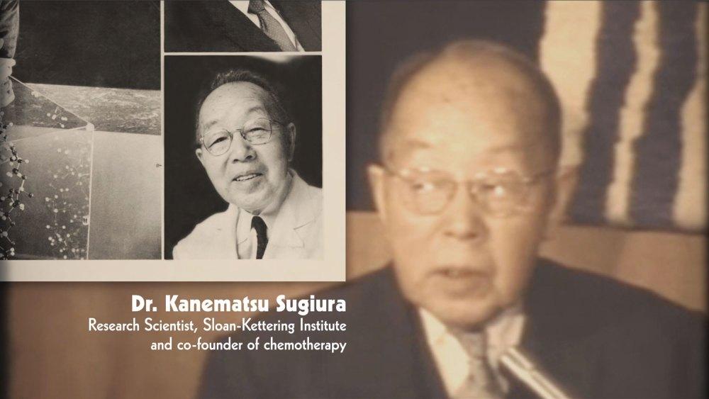 dr_kanematsu_sugiua_film_01