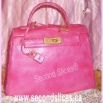 pink crocodile kelly fendi hermes purse cake from Second Slices® Cake shop n Bakery in Edmonton AB