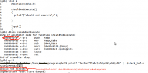 Execution of shouldNotExecute() function