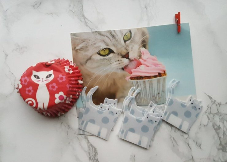 my purrfect gift box october