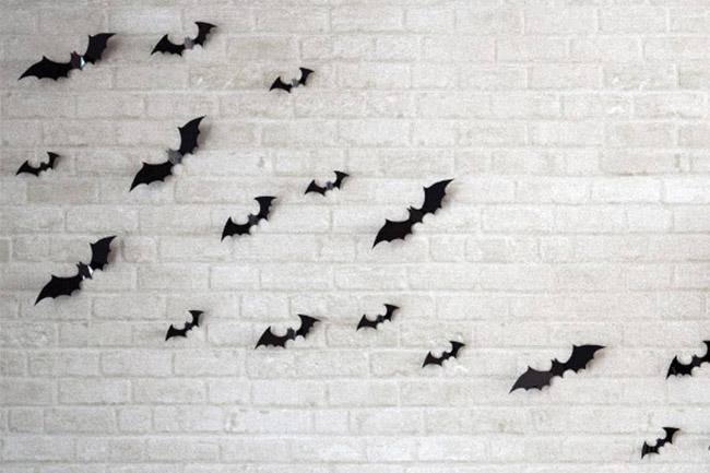 Bats on wall