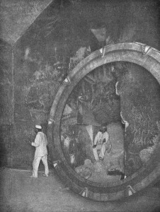 Stargate - NSA web portal