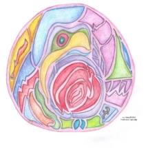 NA Profound Art Mandala New