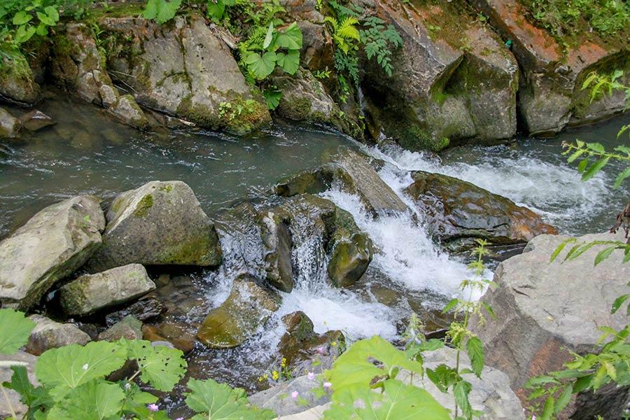 Быстрая речка Каменка