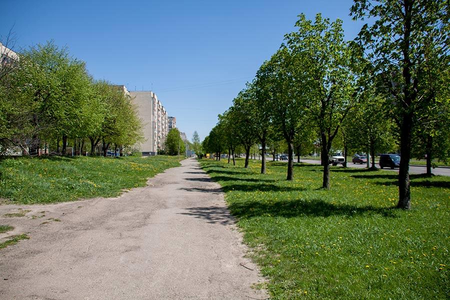 Улица Научная