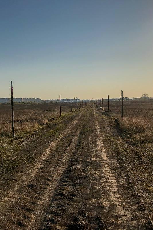 Новая старая дорога через поле