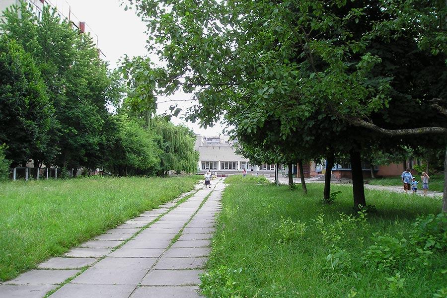 Вид на школу сквозь деревья