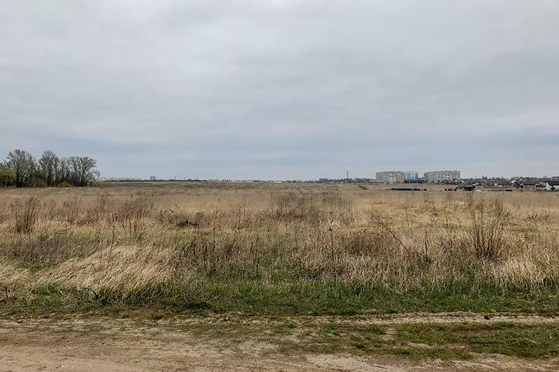 Голое поле