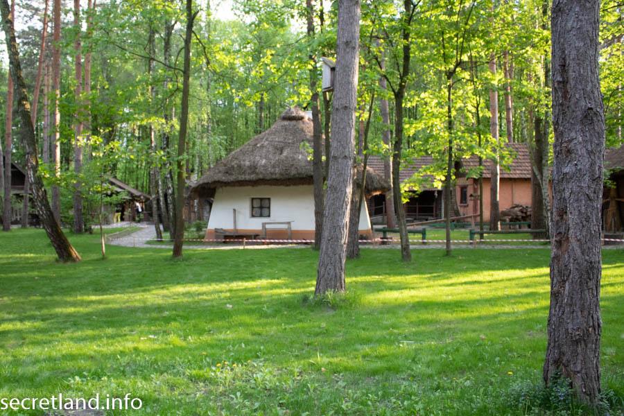 Украинское село Бузова
