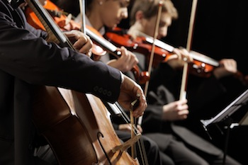 String section from a symphony orchestra