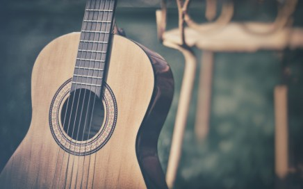 Guitar in a nature setting