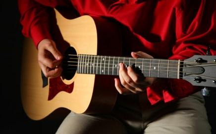 Singer - Songwriter - Guitarist