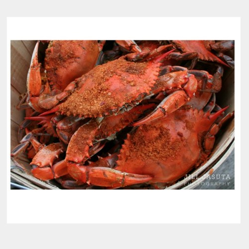Steamed Crabs Greeting Card by Secrets of the Eastern Shore