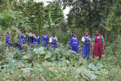 sabina permaculture garden