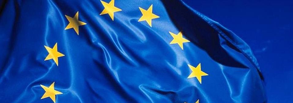 El Parlamento Europeo pide una regulación más uniforme