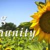 Caring Community (slide2)