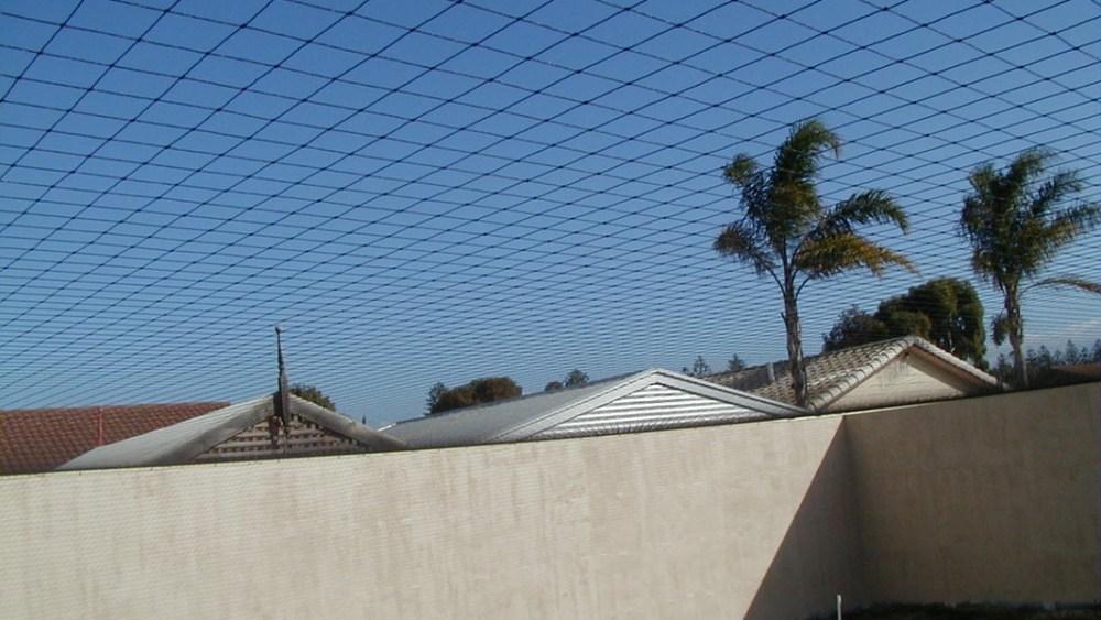 Cat Enclosure Brisbane