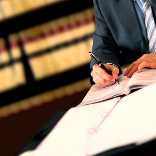 Litigation Consulting