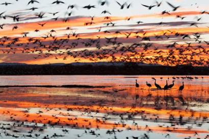 national-geographic-traveler-photo-contest-2013-60