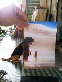 Jaemy-Choong-hijacking-movie-posters-4