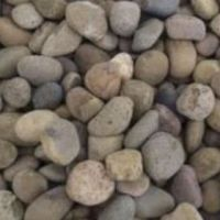 Caledonian River Washed Pebbles
