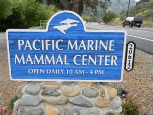 The Pacific Marine Mammal Center