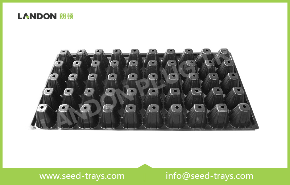 50 Cell Seedling Trays