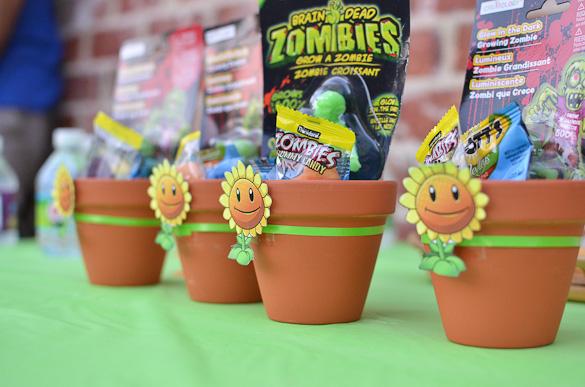 Plants Vs Zombies Birthday Party Ideas