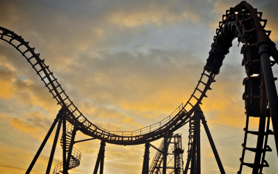 Hitching a Ride on the Stock Market Rollercoaster