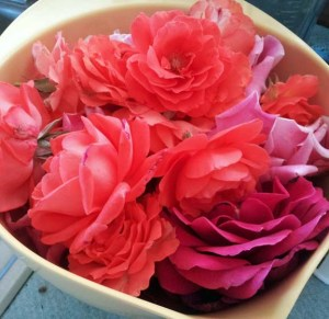 roses for jam