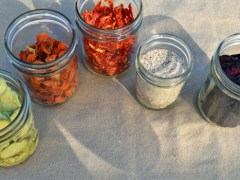 Make Your Own Vegetable Powders