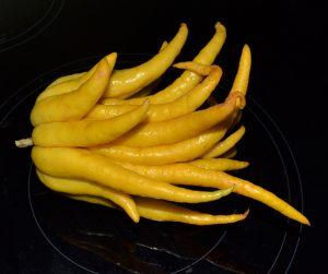 candied citron