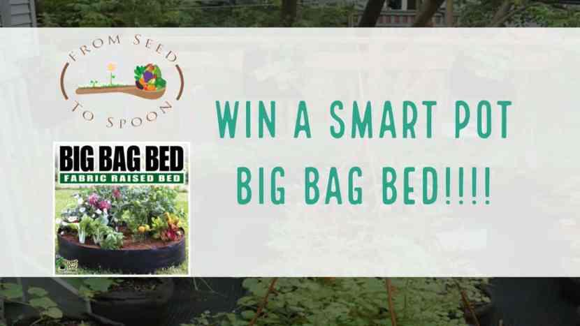 smart pots contest