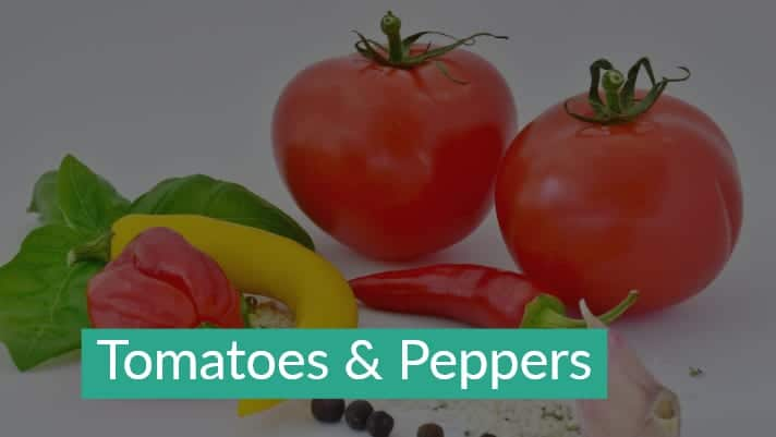 Tomatoes+Peppers
