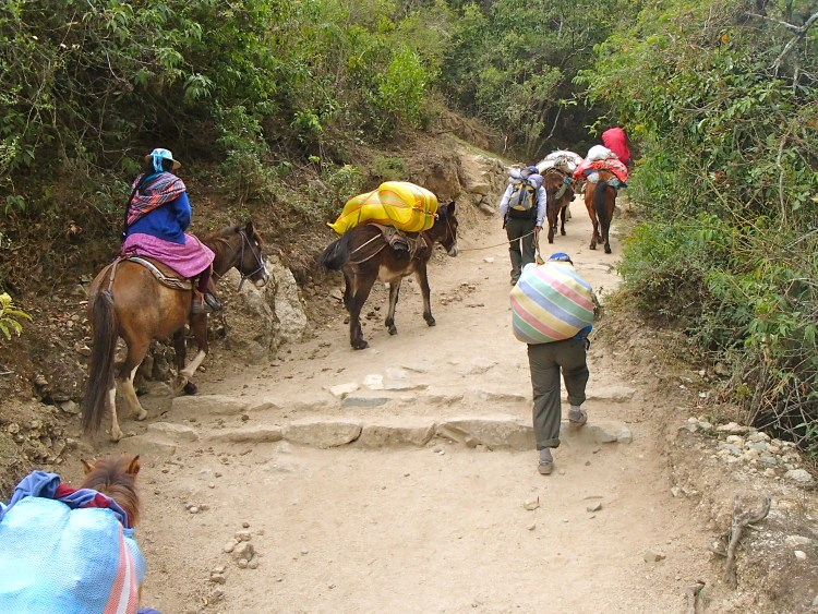 what is the distance of the inca trail? how difficult is the inca trail?
