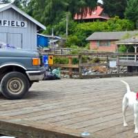 West Coast Trail Transportation- Bamfield Bound