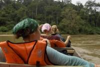 Trekking in Taman Negara, Malaysia's National Jungle