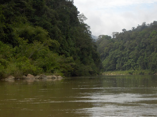 river boat in taman negara malaysia top experiences in malyasia where to travel in malaysia best places to see in malaysia