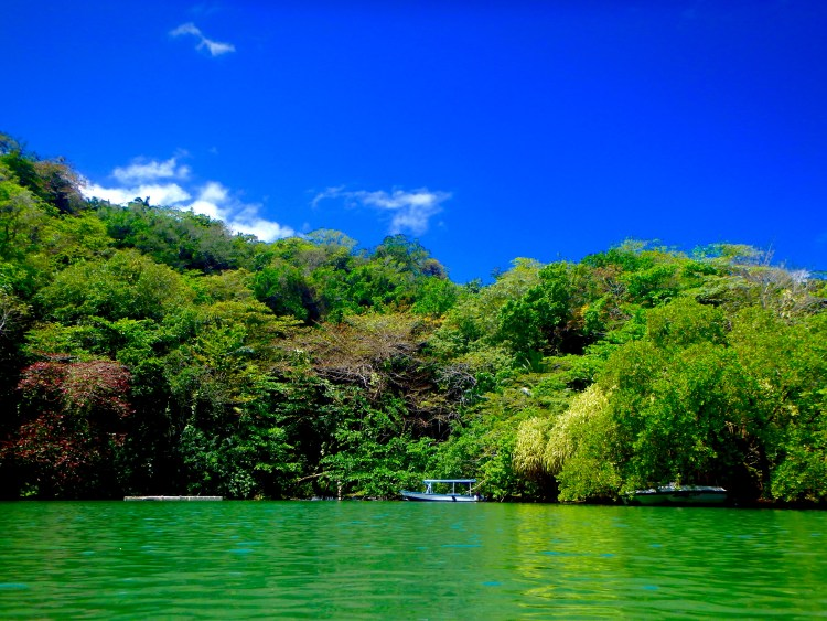 The Blue Lagoon in Jamaica hidden gems in jamaica places to visit in Jamaica