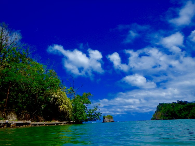 best place to swim in jamaica day trips in jamaica top places to see in jamaica travel blog