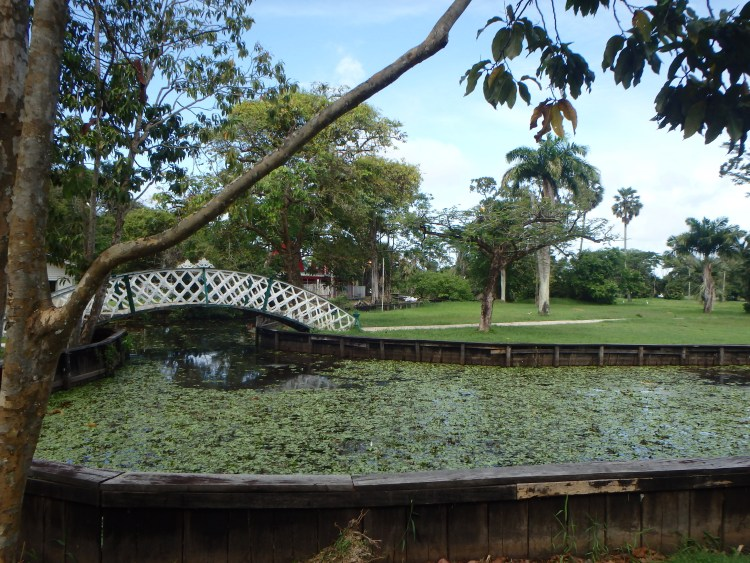Guyana botanical gardens and Zoo things to see in georgetown is guyana safe for travel blog